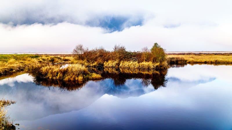 在枫树岭附近使垂悬在彼特河和彼特Addington沼泽模糊在彼特开拓地在不列颠哥伦比亚省,加拿大 库存图片