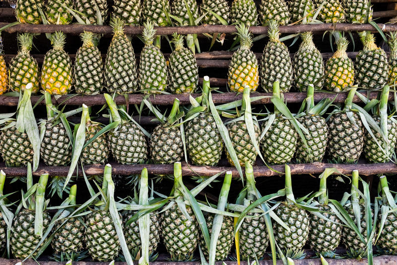 在架子的新鲜的菠萝 免版税图库摄影
