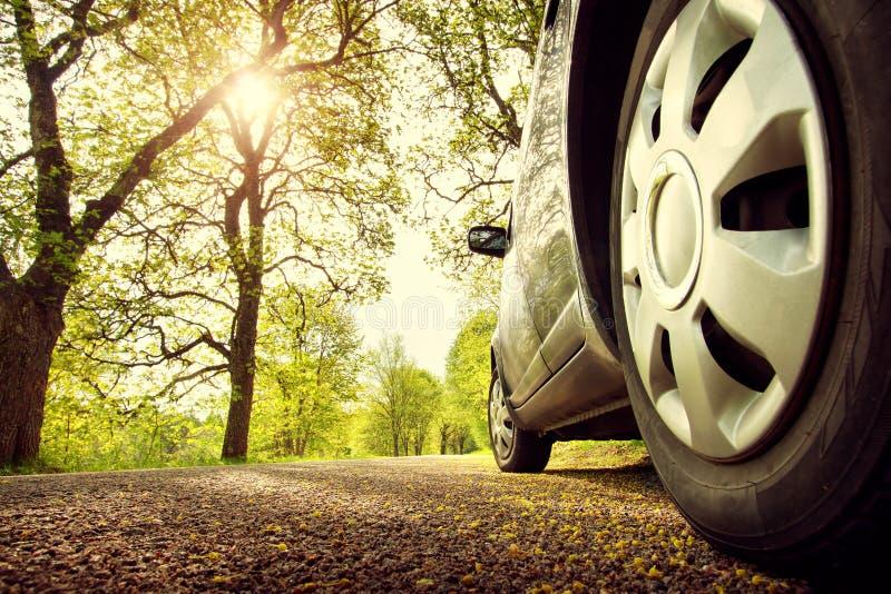 在柏油路的汽车在春天 免版税库存照片