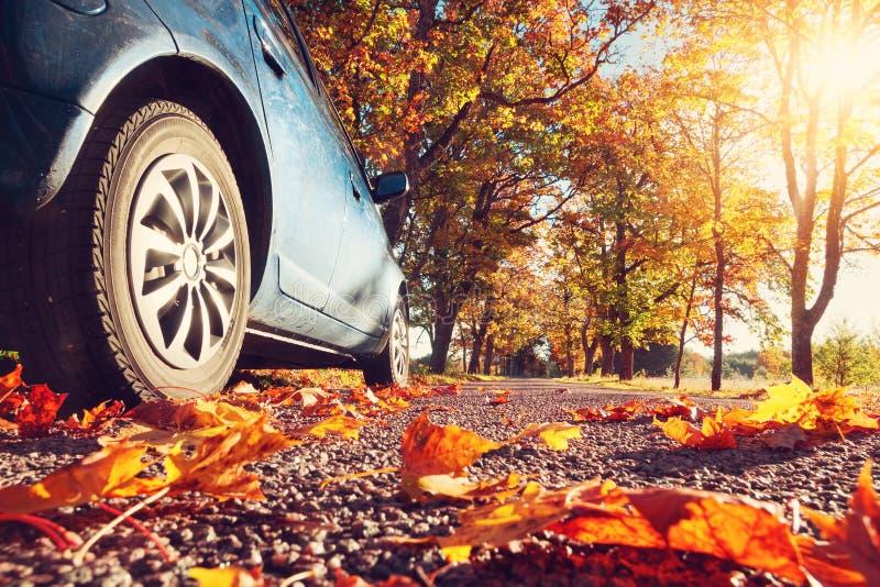 在柏油路的汽车在秋天 免版税库存图片