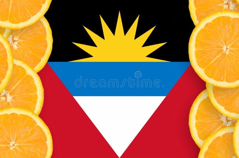 在柑桔切片垂直的框架的安提瓜和巴布达旗子 免版税库存图片