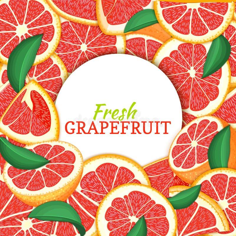 在柑橘葡萄柚背景的圆的白色标签 传染媒介卡片例证 热带新和水多的红色柚框架 向量例证