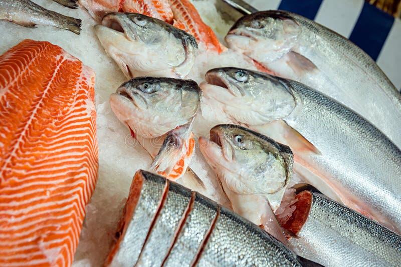 在柜台的鱼在超级市场 库存照片