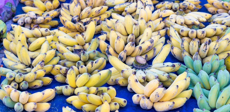在柜台的黄色香蕉束 免版税库存图片