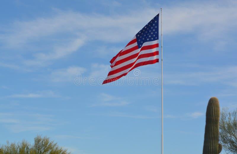 在柱仙人掌仙人掌旁边的美国旗子,洞小河,马里科帕县,亚利桑那,美国 免版税库存图片