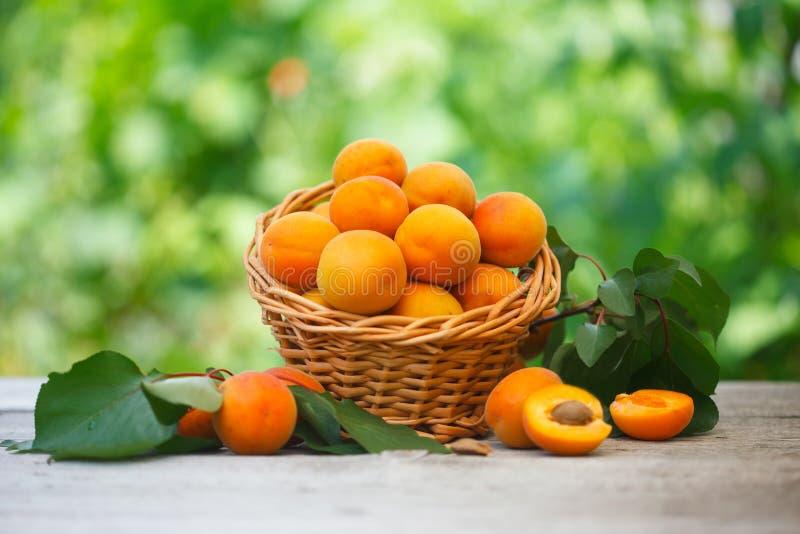 在柳条筐的成熟新鲜的有机杏子在木桌上 免版税图库摄影