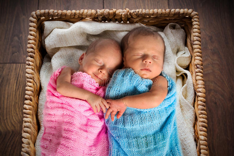 在柳条筐里面的新出生的孪生 免版税库存照片