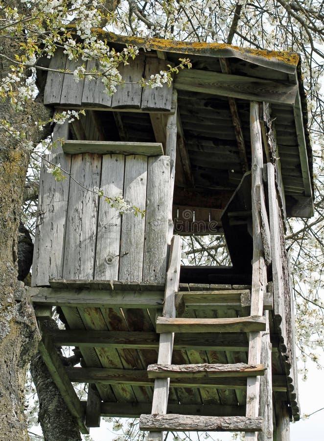 在树上被修造的山的狩猎小屋 库存图片