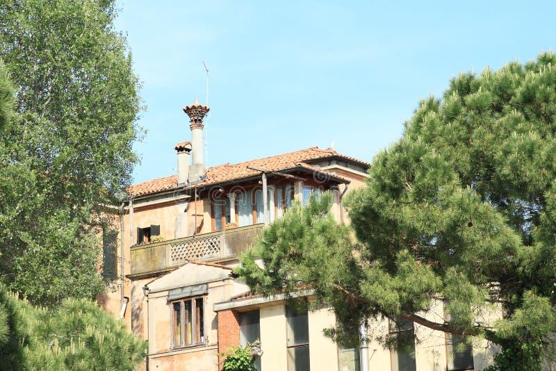 在树中的议院在威尼斯 库存照片