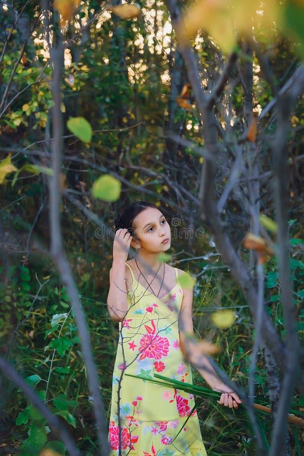 在树中的青少年的女孩,夏天 库存照片