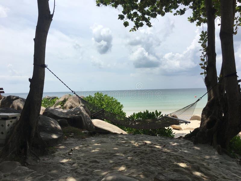 在树之间的吊床在与海的白色沙子海滩backgr的 免版税库存照片