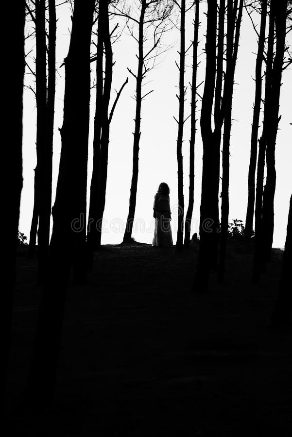 在树之间的剪影妇女 免版税图库摄影