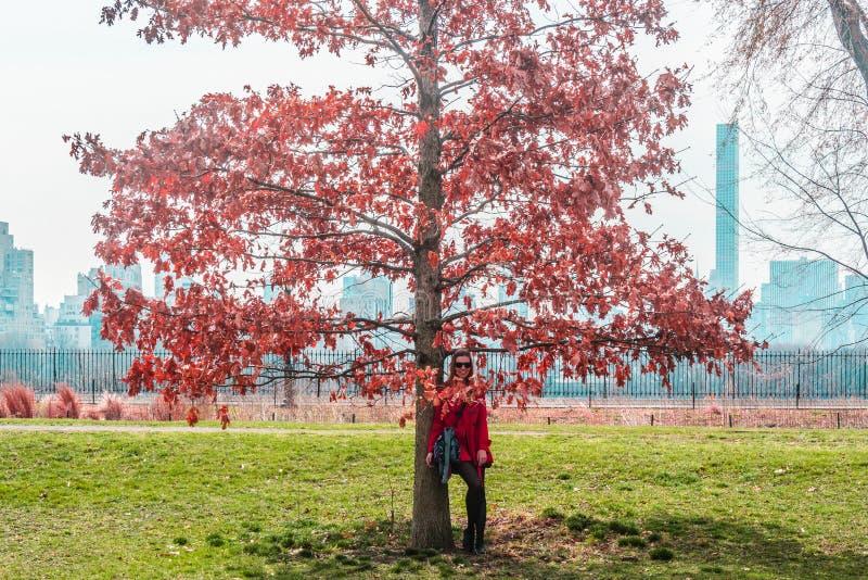 在树前面的女孩在中央公园在曼哈顿,纽约Ci 免版税图库摄影