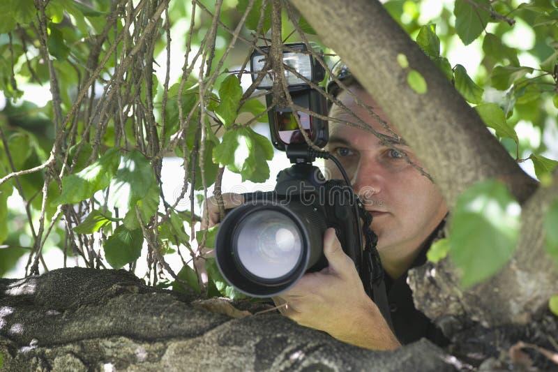 在树后的无固定职业的摄影师摄影师 图库摄影