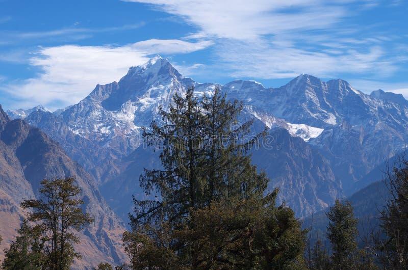 在树后的楠达德维山峰顶 图库摄影