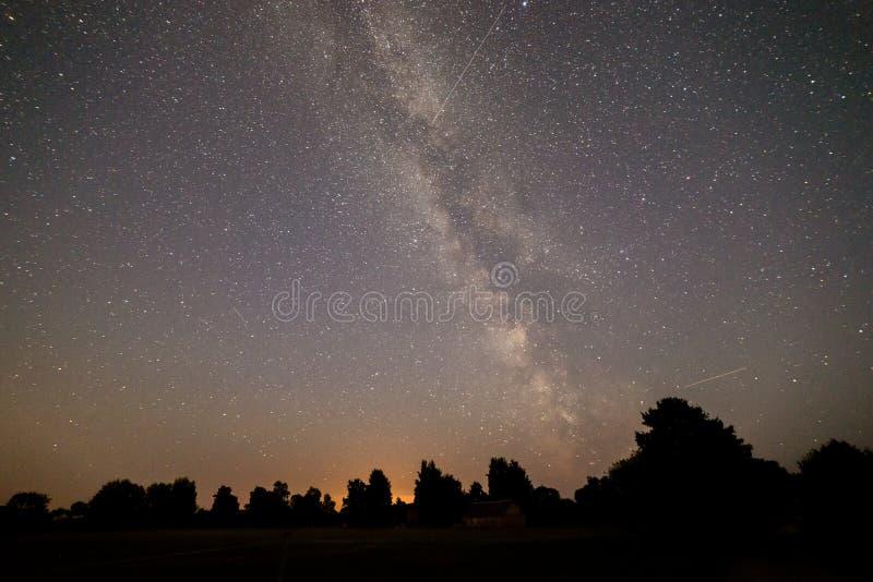 在树夜空和剪影的美丽的银河星系  库存图片