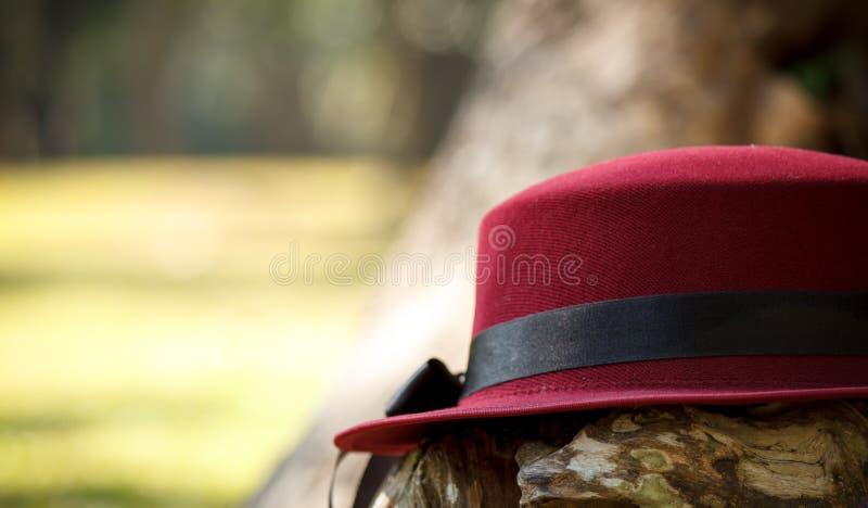在树干的红色帽子 免版税库存图片