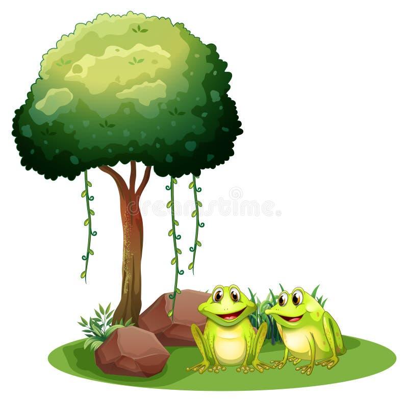在树旁边的两只微笑的青蛙 库存例证