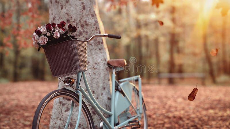 在树旁边的蓝色自行车 免版税库存图片