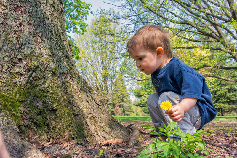 在树旁边的年轻男孩 库存图片