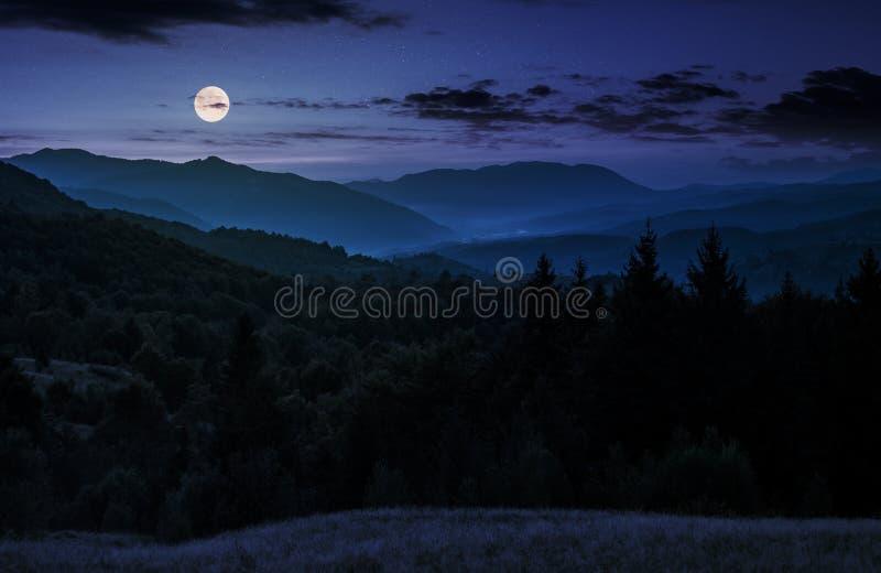 在树木丛生的山上的满月上升在晚上 库存图片