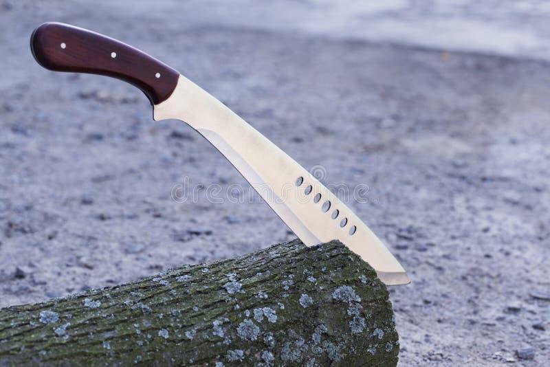 在树桩困住的大砍刀 库存照片