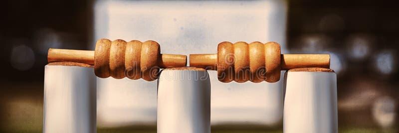 在树桩的保释金在板球场 免版税图库摄影