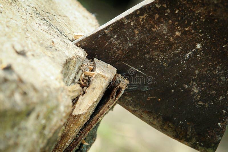 在树桩的轴 免版税库存照片
