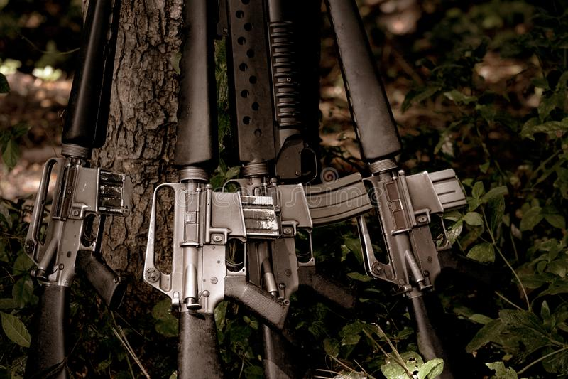 在树森林的枪在战争以后 免版税图库摄影