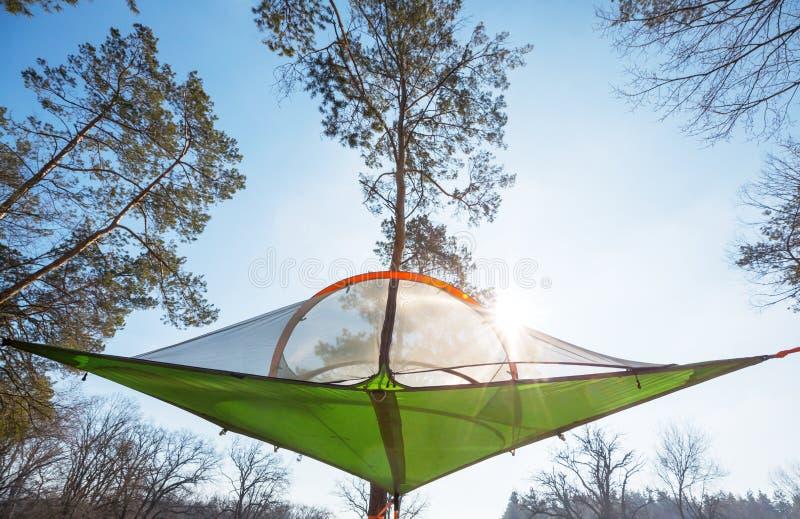 在树的帐篷 库存图片