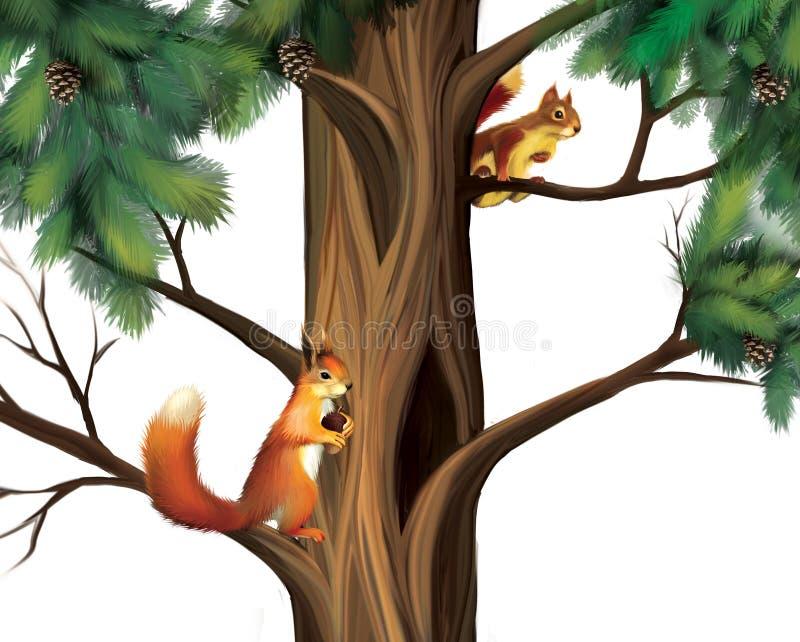 在树的灰鼠。 二只逗人喜爱的灰鼠。 向量例证