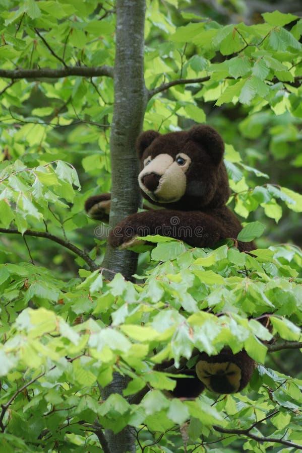 在树的玩具熊 免版税库存图片