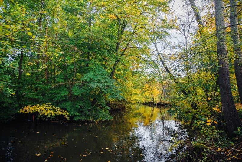 在树的秋天颜色在河附近 库存图片