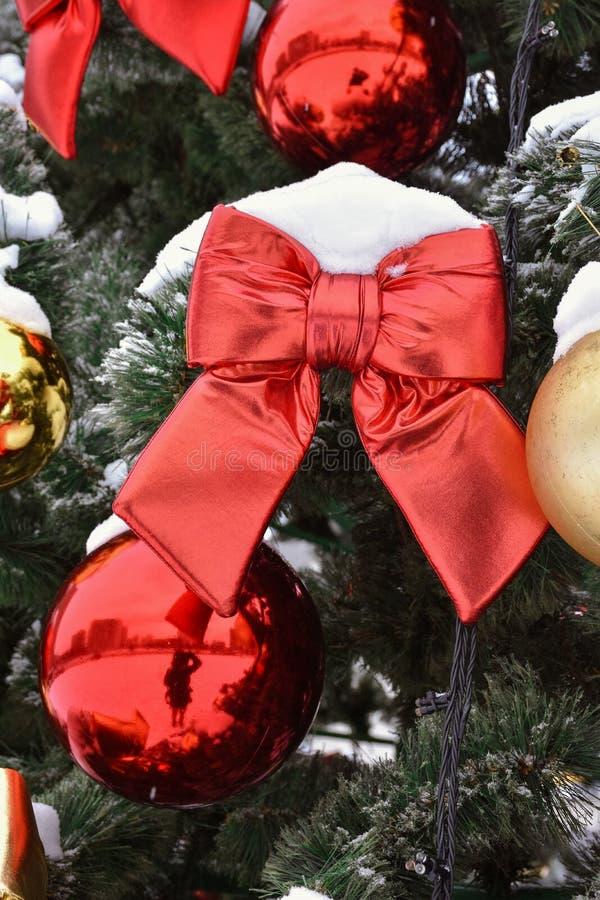 在树的红色弓在雪 免版税库存照片