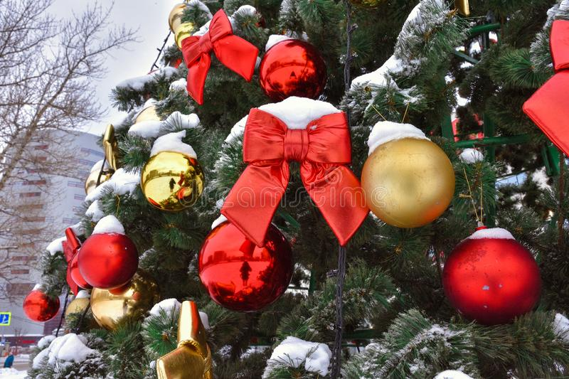 在树的红色弓在雪 免版税图库摄影