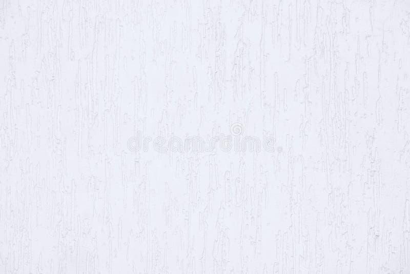 在树皮甲虫样式的涂灰泥的墙壁,样品,在白色、房子建筑和门面  免版税图库摄影