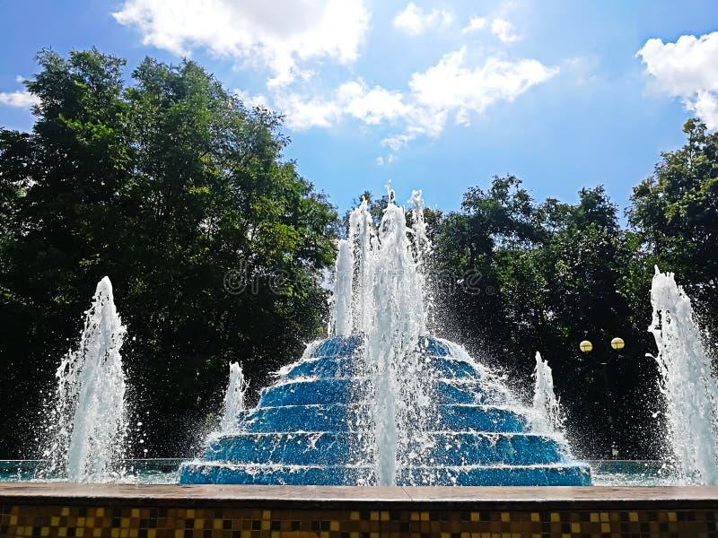 在树背景的美丽的喷泉在蓝天下 免版税库存照片