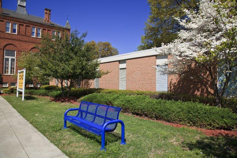在校园里的长凳 库存照片