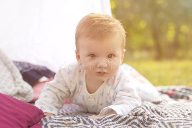 在格子花呢披肩的小新生儿男婴孩子在公园 夏天Su 免版税图库摄影