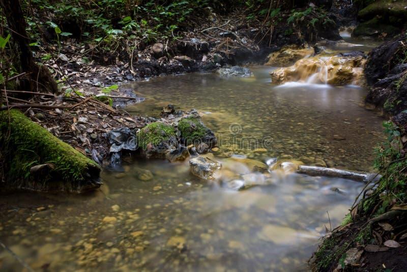 在格德火山Pangrango山中间木头的可爱的模糊的光滑的温泉城小河  库存图片