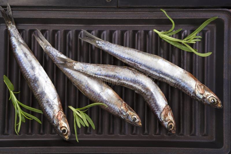 在格栅的鲜鱼 免版税库存照片
