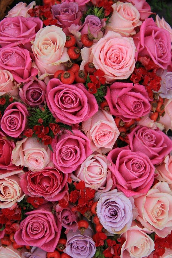 在桃红色和紫色的新娘玫瑰 免版税库存图片
