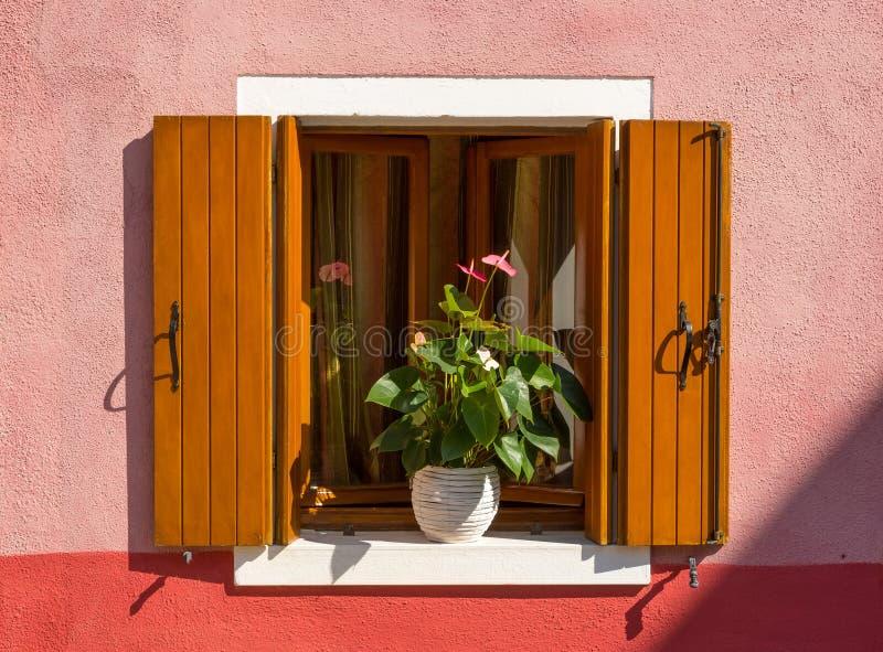 在桃红色墙壁,Burano上的小窗口 库存图片