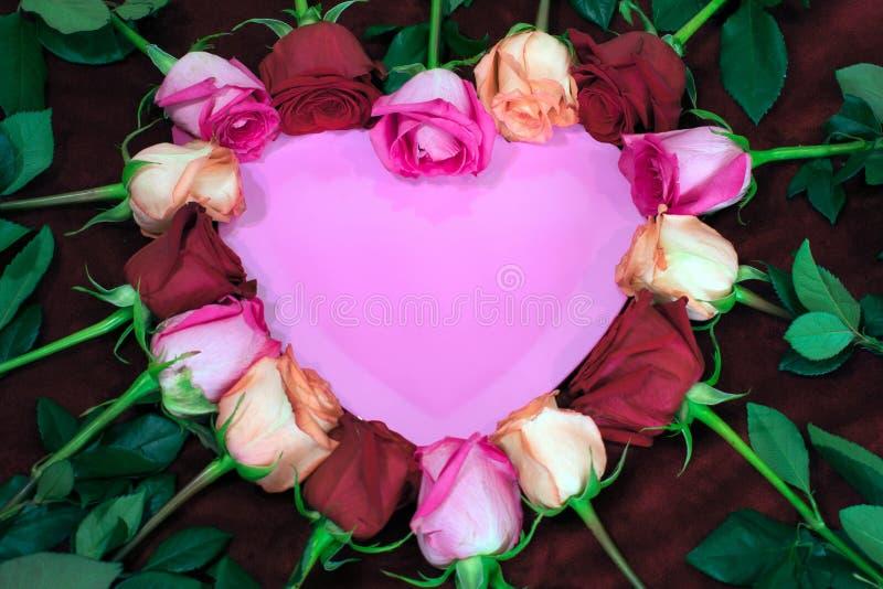 在桃红色心脏附近被安置的红色和桃红色玫瑰 免版税库存照片