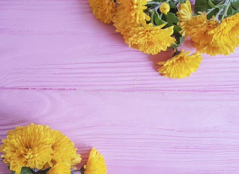 在桃红色木制框架背景的菊花黄色花庆祝 免版税库存照片
