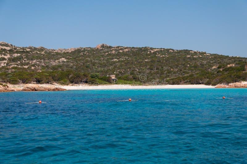 在桃红色海滩马达莱纳半岛budelli海岛上的令人惊讶的天蓝色的海水在撒丁岛,意大利 免版税库存照片