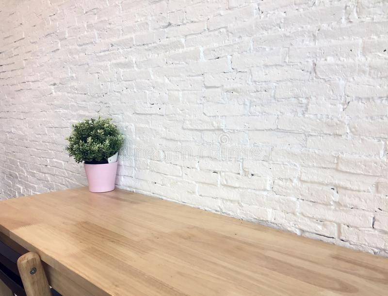 在桃红色罐集合装饰的绿色塑料树在木桌和白色墙壁背景上 免版税库存图片