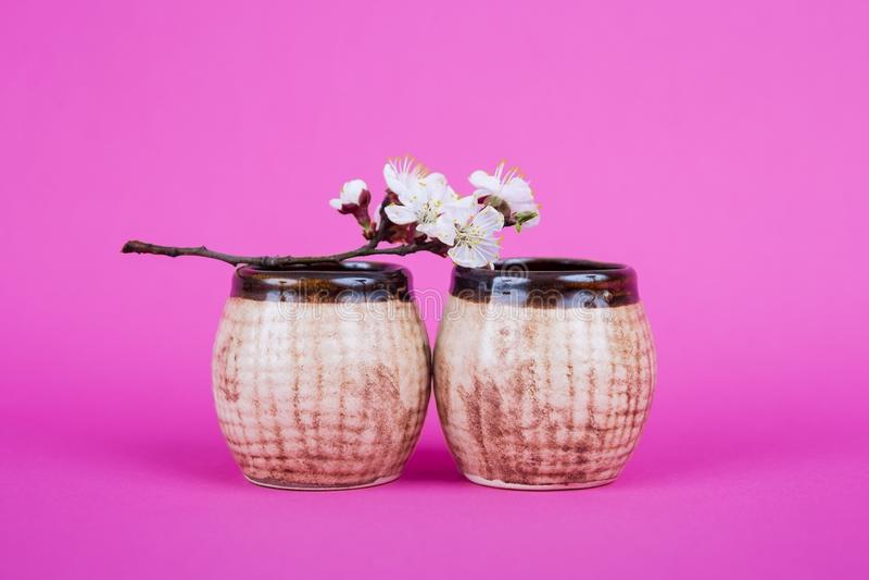 在桃红色背景的两个空的棕色陶瓷杯子 与花和杯子的一个分支 在桌上的两个咖啡杯 布朗杯子  免版税库存照片