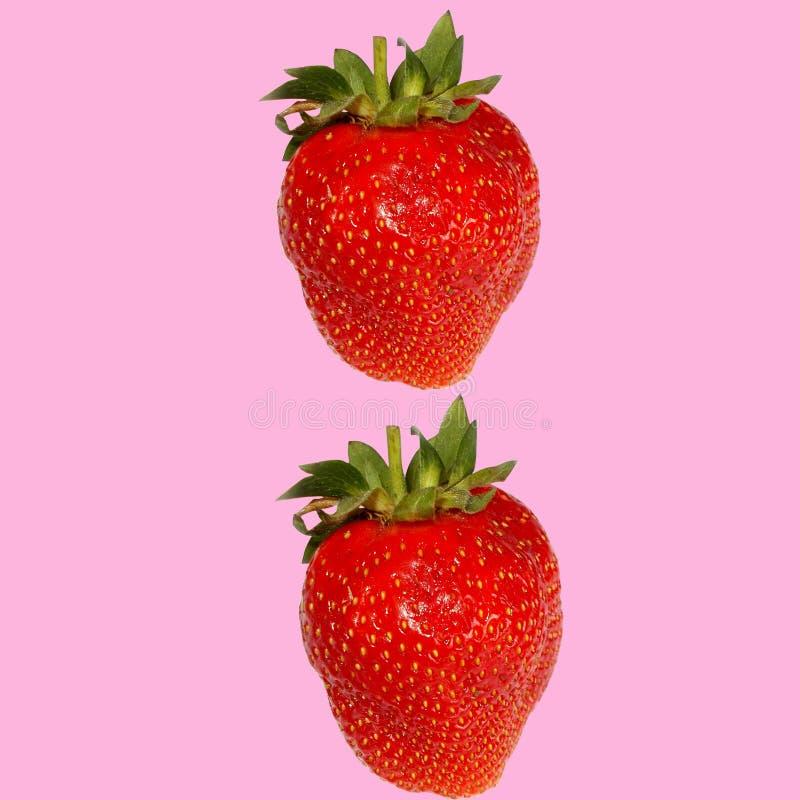 在桃红色背景的两个红色草莓 库存照片