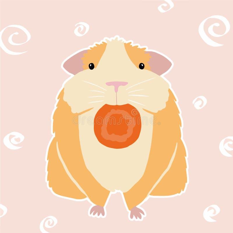 在桃红色背景的五颜六色的豚鼠 豚鼠的例证用红萝卜 皇族释放例证